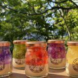 【通販限定】ステンドグラスのように輝く5色のプリン!長崎のご当地プリン専門店「長崎南山手プリン」