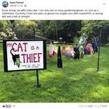 「うちの猫は泥棒です」盗み癖にウンザリの飼い主、看板を立てて近所に告知(米)