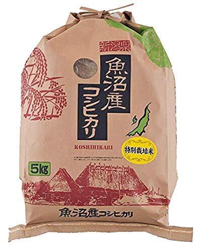 精白米 5kg 金賞受賞 桑原健太郎さんの魚沼産コシヒカリ 令和2年産 安心安全な特別栽培米