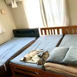 寝具を『冷感』に交換した飼い主 それに気付いた猫たちが…?