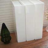 【セリア使用ルポ】ブック型収納ケースで整理整頓が捗る縦収納
