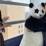 岡田准一、パンダの星星に技をかける 『ZIP!』英語コーナーに登場