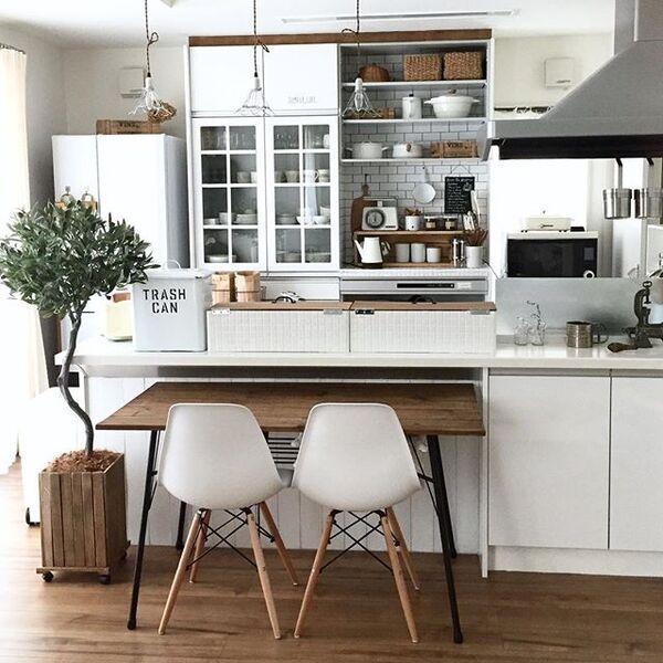 大きなオリーブをキッチン横に飾る