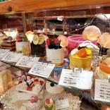 """いながきの駄菓子屋探訪49栃木県下野市「Sango-Papa」店主の好きなものがひしめき合う""""食べられないケーキ""""の店"""