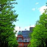 聖火リレーでめぐる47都道府県【6月13日~】と北海道のルート&名所・観光スポット2選