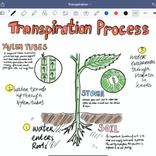 iPadで仕事効率化! おすすめのメモアプリ7選