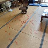 「現在逃走中です」 神社で行われた犯行 犯人の正体は!