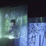 川本真琴の新曲「鳥さんあんぱんブーチーコリンズ」「街の本屋さん」MV公開