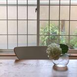 窓や網戸の掃除は梅雨に!床用ワイパーと洗車ブラシで、ごっそりラクに汚れを落とす