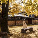 人生の教訓を教えてくれる韓国のことわざ特集!座右の銘にしたい名言をチェック