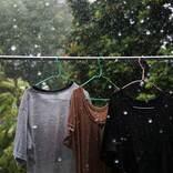 ゲリラ豪雨で濡れてしまった洗濯物、洗い直すべき? 回答に「知らなかった」の声