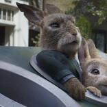 映画『ピーターラビット2』人間VSモフワルうさぎ! ウサギたたきゲーム勃発の本編映像解禁!