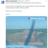 着陸直前に巨大クモが出現 操縦者はパニックも同乗者は爆笑で機内は大混乱(豪)<動画あり>