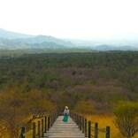【八ヶ岳・清里】東京から2時間の高原リゾート!絶景から絶品グルメ、癒やしの宿まで、おすすめスポットまとめ