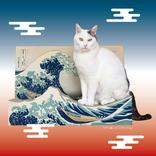 """ニャンて素敵!葛飾北斎の名画「富嶽三十六景」が""""猫用つめとぎ""""に"""