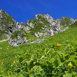 絶景と秘湯に出会う山旅(27)天空の花園!木曽駒ヶ岳と早太郎温泉