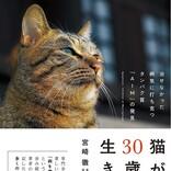 愛猫家に朗報! 世紀の大発見「AIM」で猫の寿命が2倍に延びる!?