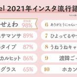 はにゃ?しか勝たんetc.【2021年上半期】インスタ流行語大賞が発表!