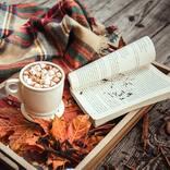 秋の夜長のお供におすすめしたい小説18選。ジャンル別に人気の作品を集めました