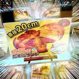 【巨大】日本一デカい! 直径20センチのたまごサンドを食べてみた / カフェサングリア「太陽のたまごサンド」