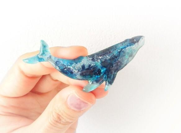 ザトウクジラのブローチ