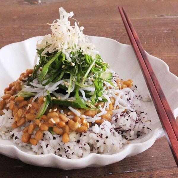 薬味たっぷり納豆ご飯