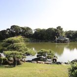 【東京さんぽ】絶景、温泉、自然、絶品グルメ&スイーツ・・・都内で楽しめるおすすめスポットまとめ