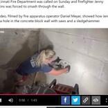 「鳴き声がする」と壁を破壊、5日間行方不明だった犬が救出される(米)<動画あり>