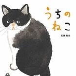 今、話題の絵本! 野良だった猫がゆっくり、うちの猫になるまでの心温まる話!