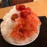 京都で絶対に食べたい!ひんやりパフェ&かき氷11選~すべて実食ルポ~
