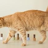 猫をイメージしたネイルポリッシュが登場!定番3色に新作3色を加えた計6色を限定パッケージ発売!