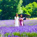 【たんばらラベンダーパーク】早咲き・中咲きがまさに見頃!ラベンダーの香りのなか爽快トレッキング