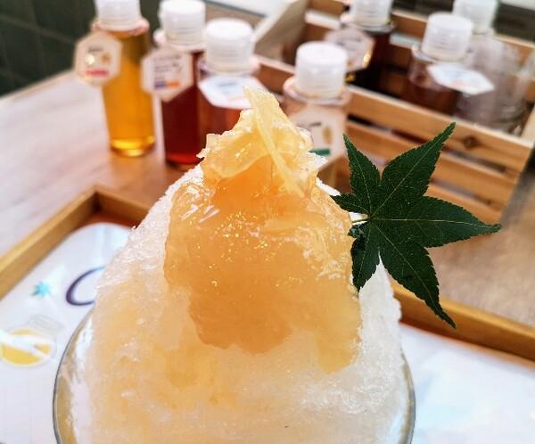 京都府京都市・蜂蜜専門店「ミールミィ三条本店」自家製蜂蜜のかき氷(ハニージンジャー)上2