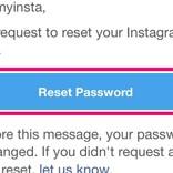 Instagramのパスワードをリセットする