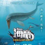 福井県立恐竜博物館で初の海竜展 名探偵コナンの声優・高山みなみさんが音声解説