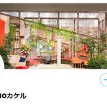 木村佳乃、娘たちへ夢を語る「大谷くんを生で観せてあげたい!」