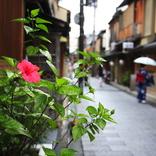 エリートが「京都マウント」を多用する理由。銀座よりも西麻布よりも先斗町