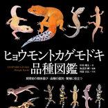 ヒョウモントカゲモドキ600種  種名の由来も分かる品種図鑑