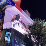 新宿駅東口の巨大猫をゆっくり見るなら「おやすみ編」がおすすめ / リアル過ぎる3Dニャンコが超かわえええ~~