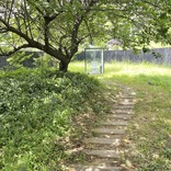 【開放的すぎ】千葉県市原市にある「世界一大きい公衆トイレ」に行ってみたら……そこはまるで別世界!
