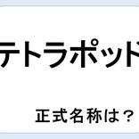 【クイズ】テトラポッドの正式名称って何だか言える?意外に知らない!