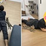 まさかのシンクロ 新入り猫を見守る姿が天才的に可愛い