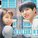 人気韓国ドラマ『ブルーバースデー』の無料放送決定!