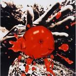 サザンオールスターズとは違う桑田佳祐の魅力が詰まったソロの傑作『孤独の太陽』