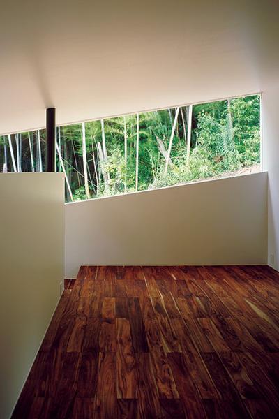 スリット状の開口から竹林を眺める