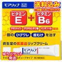 ゆうパケット)【第3類医薬品】資生堂 モアリップN 8g