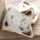 【新作食パン実食ルポ】秋を先取り!スチーム生食パン専門店「スチームブレッド エビス」の「栗好きがもっと栗を好きになる モンブラン#スチパン」
