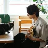 [Alexandros]川上洋平が飼い猫と共演、「ペイディ」のテレビCM