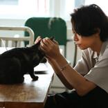 """[Alexandros]川上洋平、愛猫""""ラテ""""とCM初共演「良い子でした」"""