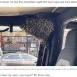 わずか10分で車内にミツバチの大群 困った運転手に養蜂家が「もらってもいい?」と素手で捕まえる(豪)<動画あり>